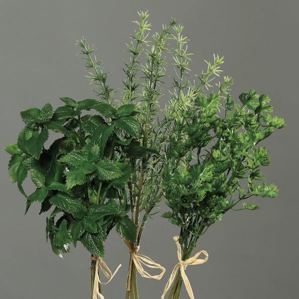 Kräutersortiment, 20-29cm