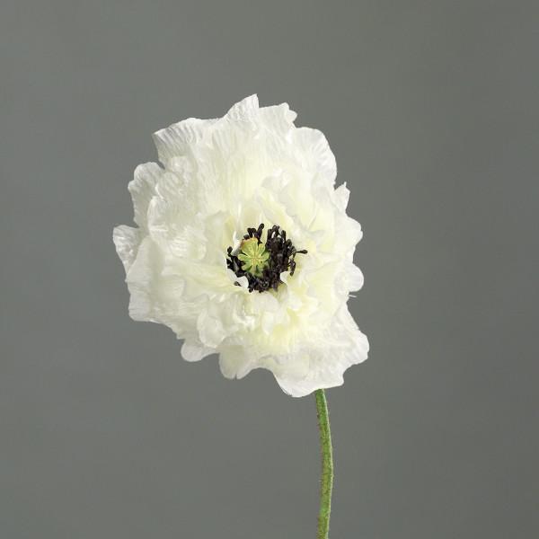 Poppy, 82cm