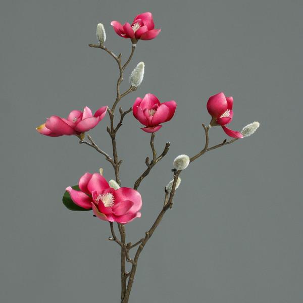 Magnolia-Branch, 64cm